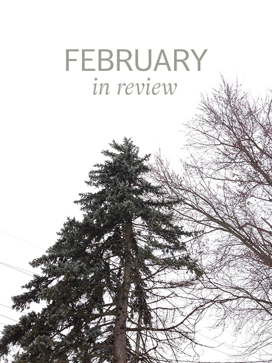 feb-review