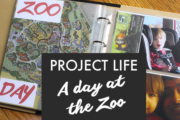 Projectlife zoo